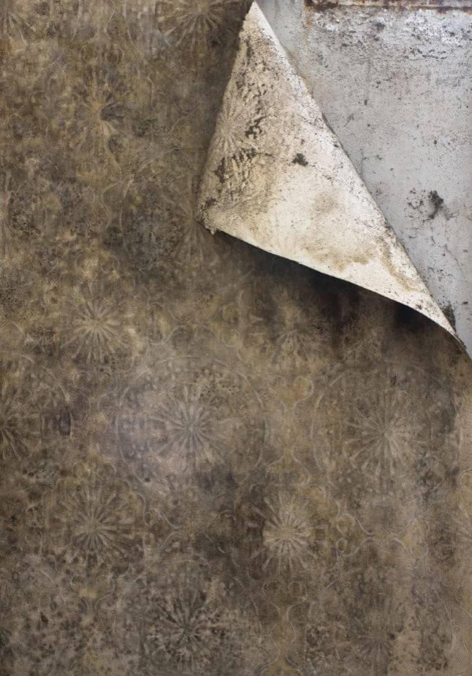 humidite mur
